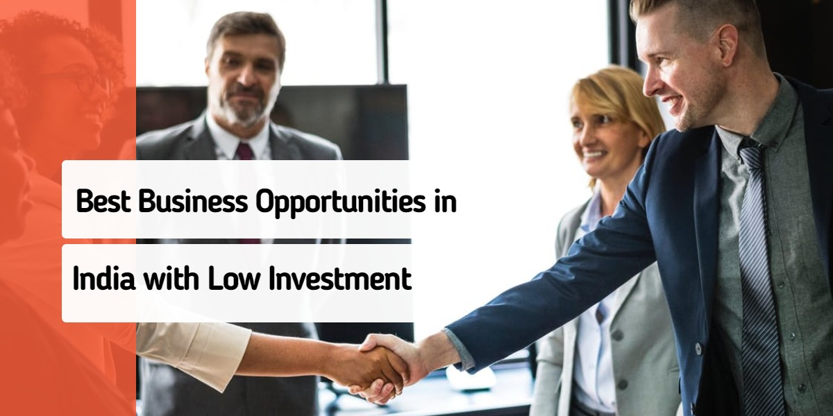 Best Business Opportunities in India with Low Investment